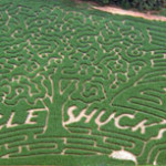 10 Fun Corn Mazes For Kids Around Atlanta