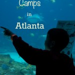 Spring Break Camps in Atlanta 2013: Atlanta Attractions Edition