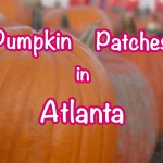 Family Guide to Georgia Pumpkin Patches Near Atlanta
