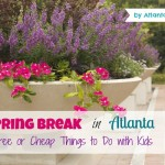 Spring Break in Atlanta: Free & Affordable Family Fun